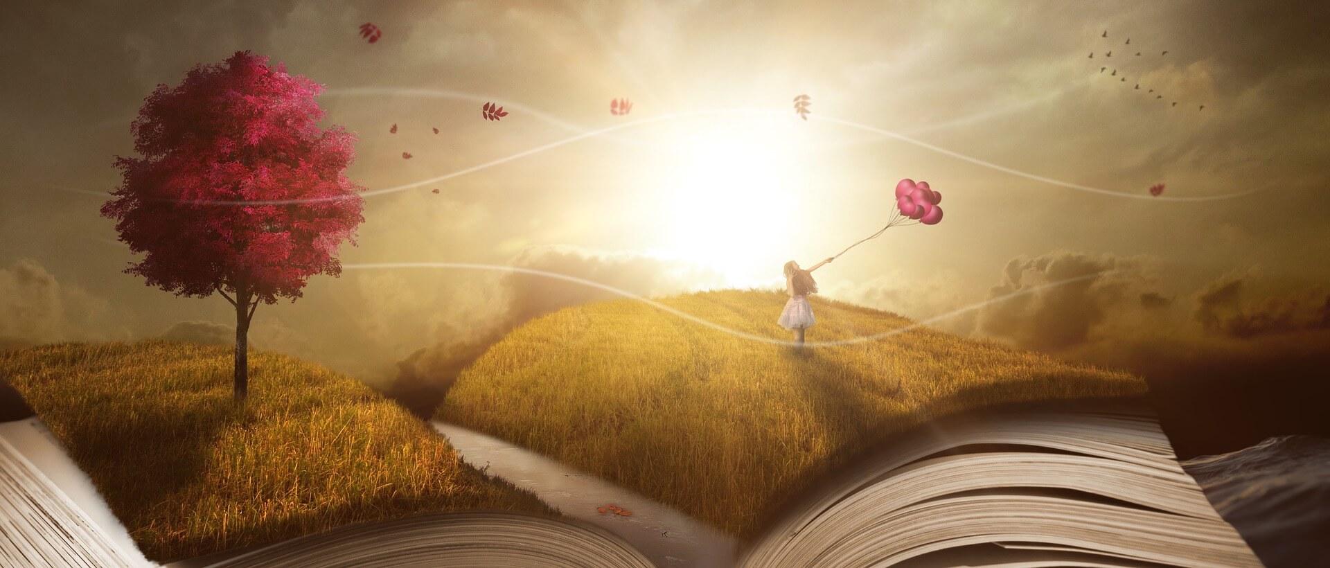 Portada book Como Libro